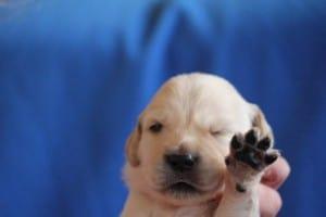 give me five :-)